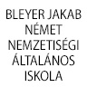 bleyer-logo