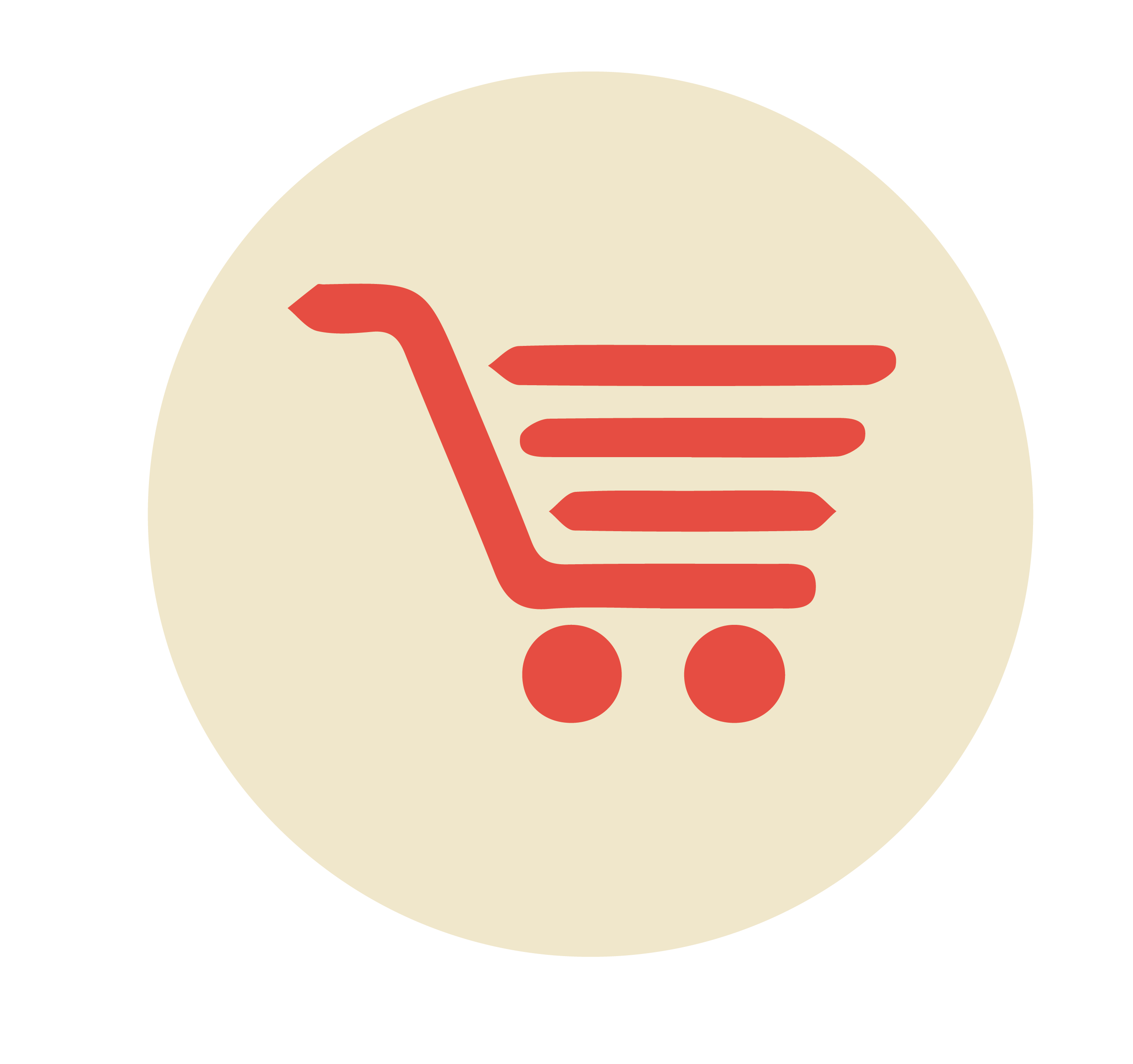 Shopping Trolley Coins