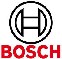 bosch_pion.jpg