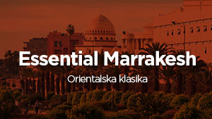 marrakesh_small.jpg