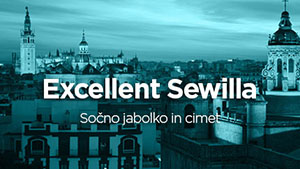 sewilla_small.jpg