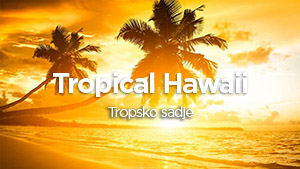 tropical_small.jpg