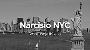 nyc_small.jpg